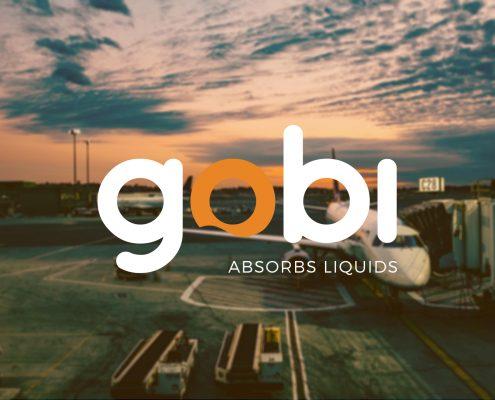 gobi LWDS